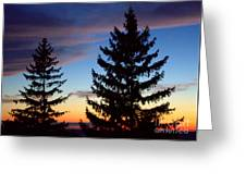 August Pine Clouds Greeting Card