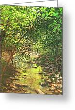 August Shade Greeting Card