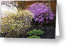 Augusta Hotel Landscaping Greeting Card