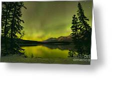 Aurora Over The Forest Greeting Card