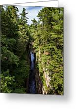 Ausable Chasm Greeting Card