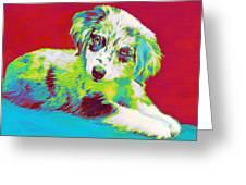 Aussie Puppy Greeting Card