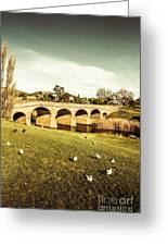 Australian Bridges Greeting Card