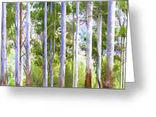 Australian Gum Trees Greeting Card