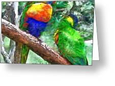 Australian Parakeets Greeting Card