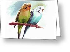 Australian Parrots 03 Greeting Card