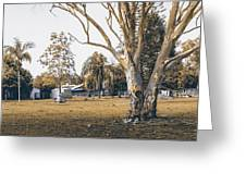 Australian Rural Countryside Landscape Greeting Card