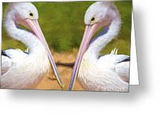 Australian White Pelicans Greeting Card