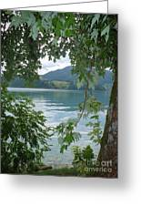 Austrian Lake Through The Trees Greeting Card