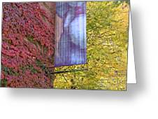 Autum Colors Greeting Card