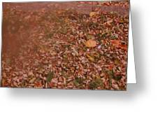 Autum Leaves  Greeting Card