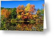 Autumn - Fall Color Greeting Card