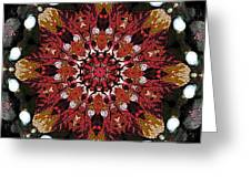 10446 Autumn 01 Kaleidoscope Greeting Card