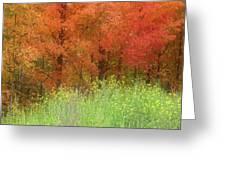 Autumn 3 - 16oct2016 Greeting Card