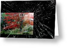 Autumn Abstraction Greeting Card