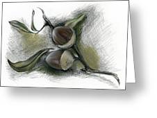 Autumn Acorns On An Oak Twig Greeting Card