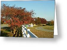 Autumn Afternoon With Shadows Greeting Card