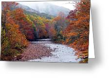 Autumn Along Williams River Greeting Card