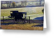 Autumn Amish Horse Buggy Greeting Card