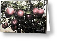 Autumn Apples - Luther Fine Art Greeting Card