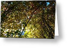 Autumn Archway Greeting Card