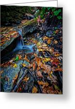 Autumn At A Mountain Stream Greeting Card