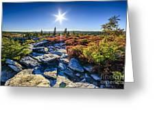 Autumn At Bear Rocks Greeting Card