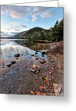 Autumn At Bubble Pond Greeting Card