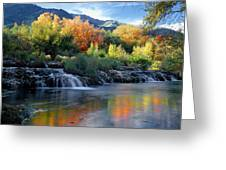 212m47-autumn At Cascade Springs  Greeting Card