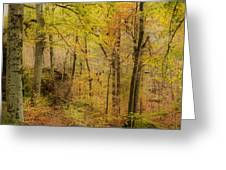 Autumn At Rim Rock Greeting Card