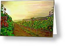 Autumn At Steenberg Greeting Card