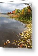 Autumn At The Lake In Nh Greeting Card