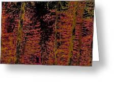 Autumn Aura Greeting Card