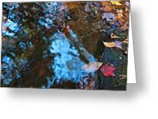 Autumn B 2015 131 Greeting Card