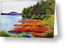 Autumn Bay Marsh Greeting Card
