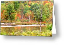 Autumn Beaver Pond Greeting Card
