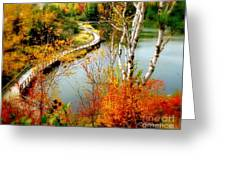 Autumn Birch Lake Boardwalk Greeting Card