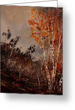Autumn Birches  Greeting Card