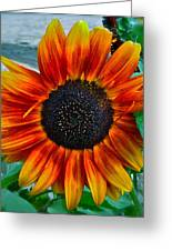 Autumn Blessing Greeting Card