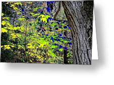 Autumn Blue  Greeting Card
