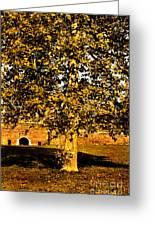 Autumn Boredom Greeting Card