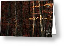 Autumn Branch Greeting Card