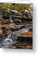 Autumn Brook Greeting Card