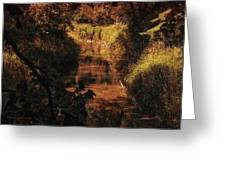 Autumn By The Argyle Creek Greeting Card