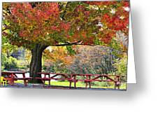 Autumn By The River On 105 Greeting Card