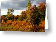 Autumn Calico Along The Arroyo El Valle New Mexico Greeting Card