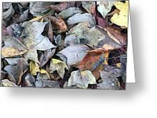 Autumn Carpet II Greeting Card