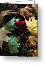 Autumn Carpet Greeting Card