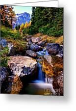 Autumn Cascade Greeting Card