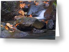 Autumn Cascades Greeting Card